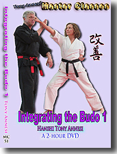 Integrating the Budo 1